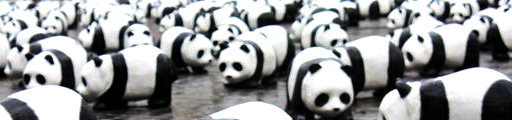 How-Many-More-Google-Panda-Will-Come